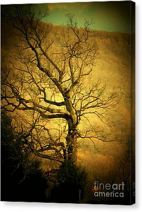 Winter Tree Canvas Print by Joyce Kimble Smith