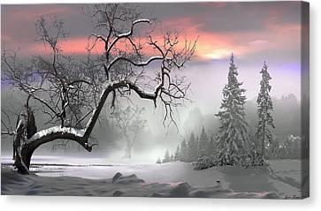 Winter Trees Canvas Print by Igor Zenin