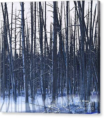 Winter Trees Canvas Print by Artist and Photographer Laura Wrede