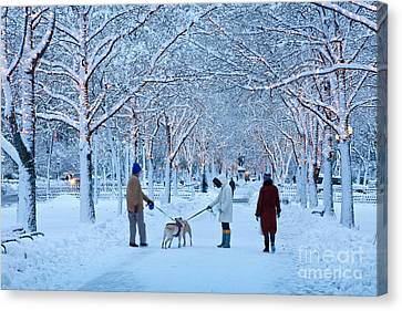 Canvas Print featuring the photograph Winter Twilight Walk by Susan Cole Kelly
