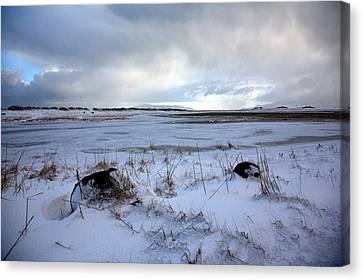 Winter Canvas Print by Vala O