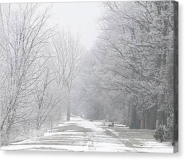 Canvas Print featuring the mixed media Winter Walkway by Bruce Ritchie