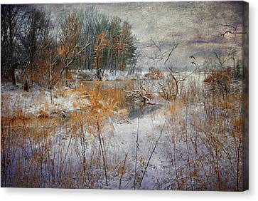 Canvas Print featuring the photograph Winter Wonderland by Mary Timman