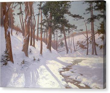 Winter Woodland With A Stream Canvas Print