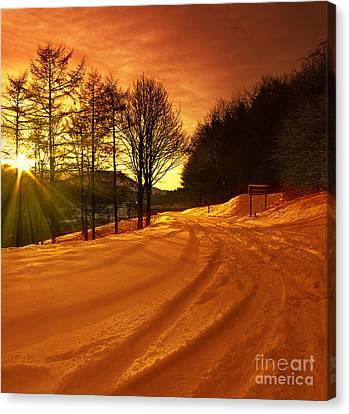 Winter World Canvas Print