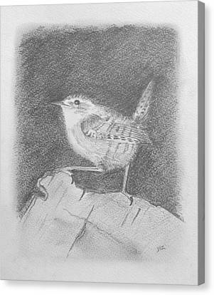 Winterkoning Wren Canvas Print by Michael Zonneveld
