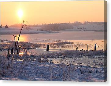Canvas Print featuring the photograph Winter's Morning by Elizabeth Winter