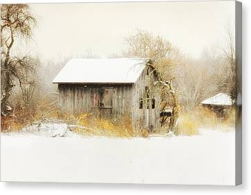 Canvas Print featuring the photograph Winters Rage by Mary Timman