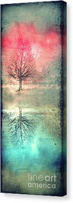 Winter's Reds And Blues Canvas Print by Tara Turner