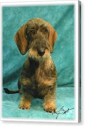 Wire Dachshund Pup Canvas Print by Maxine Bochnia