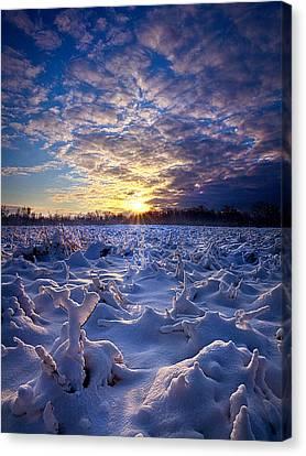 Wisconsin's Winter Wonderland Canvas Print