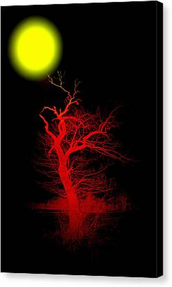 Witchwood Canvas Print by Steve K