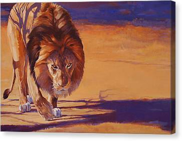Within Striking Distance - African Lion Canvas Print by Shawn Shea