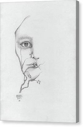 Woman Face Growing Out Of A Tree Branch Black And White Surrealistic Fantasy  Canvas Print by Rachel Hershkovitz