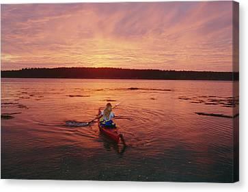Woman Kayaking At Dusk, Penobscot Bay Canvas Print by Skip Brown