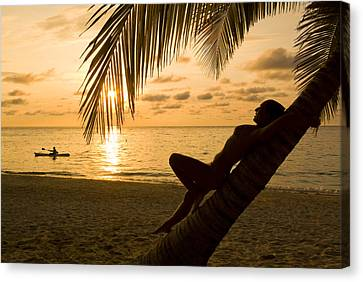 Woman Resting On A Palm Tree At Sunset Canvas Print by Richard Nowitz