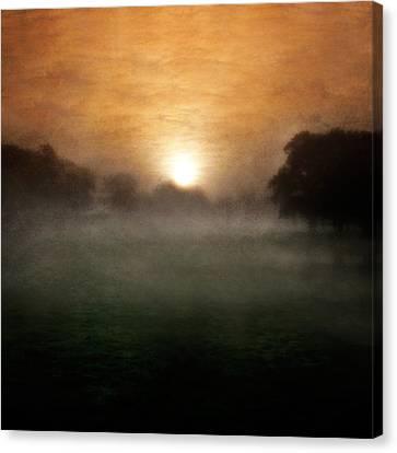 Wonder Canvas Print by Ian David Soar