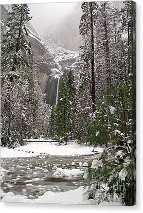 Wonderland Yosemite Canvas Print