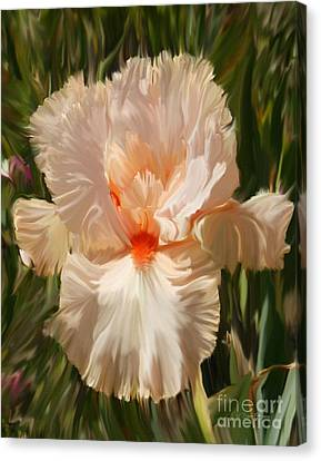 Wonderous Iris Canvas Print by Diane E Berry