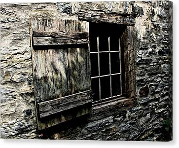 Wood And Stone Canvas Print by Julie Williams