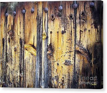 Wood Canvas Print by Eena Bo