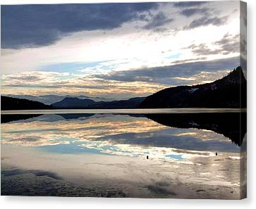 Wood Lake Mirror Image Canvas Print by Will Borden