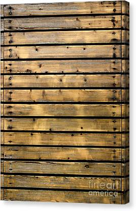 Wood Planks Canvas Print by Carlos Caetano