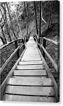 Wooden Stairs Canvas Print by Falko Follert