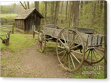 Wooden Wagon Canvas Print by Cindy Manero