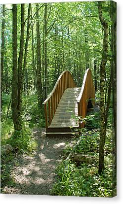 Canvas Print featuring the photograph Woodland Bridge by Peg Toliver