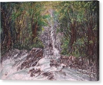 Woodland Falls Canvas Print by Ronald Tseng