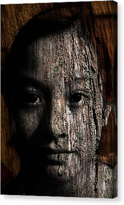 Woodland Spirit Canvas Print by Christopher Gaston