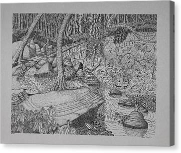 Canvas Print featuring the drawing Woodland Stream by Daniel Reed