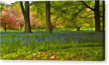 Woodland Watercolour Canvas Print by Trevor Kersley
