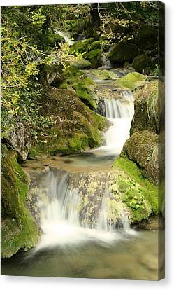 Woodland Waterfall Canvas Print by Victoria Hillman