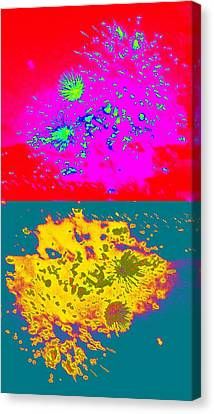 Works 8 Canvas Print by Randall Weidner