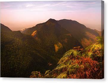 Worlds End. Horton Plains National Park I. Sri Lanka Canvas Print by Jenny Rainbow