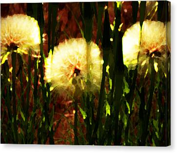Worlds Within Worlds Canvas Print by Lenore Senior