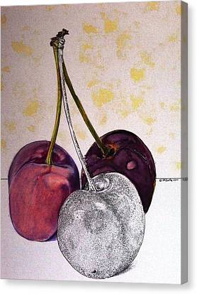 Worldview Cherries Canvas Print by D K Betts