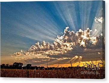 Wow Moment Canvas Print