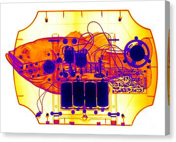 X-ray Of Mechanical Fish Canvas Print by Ted Kinsman