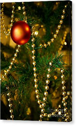 Pine Needles Canvas Print - Xmas Ball by Carlos Caetano