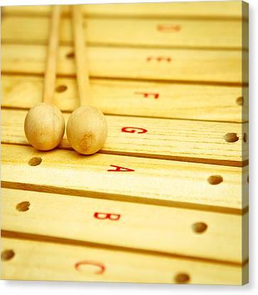Xylophone Canvas Print by Tom Gowanlock