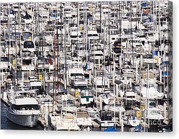 Yacht Marina Canvas Print by Jeremy Woodhouse
