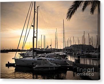 Yachts At Sunset Canvas Print by Carlos Caetano