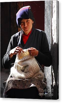 Yak Wool Sweater Weaver Canvas Print by Marko Moudrak