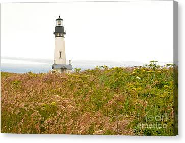 Canvas Print featuring the photograph Yaquina Head Lighthouse In Oregon by Artist and Photographer Laura Wrede