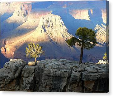 Canvas Print featuring the photograph Yavapai Point Cliff Hangers by Scott Rackers