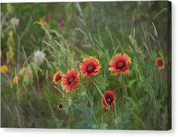 Canvas Print featuring the photograph Yawn...more Flowers by John Crothers