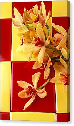 Yellow And Red Orchids  Canvas Print by Garry Gay